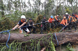 Soldiers join together to pull a fallen tree toppled by Typhoon Hagupit in Eastern Samar, in central Philippines, Dec. 8, 2014.