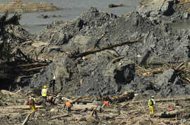 Workers search an area next to large mounds of dirt near Darrington, Washington state, in the debris field of the deadly mudslide, April 1, 2014.