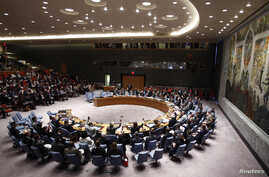 Members of the Security Council vote on a resolution drafted by Australia, which lost 28 citizens in a Malaysian passerger plane crash in Ukraine, during meeting at United Nations headquarters in New York, July 21, 2014.