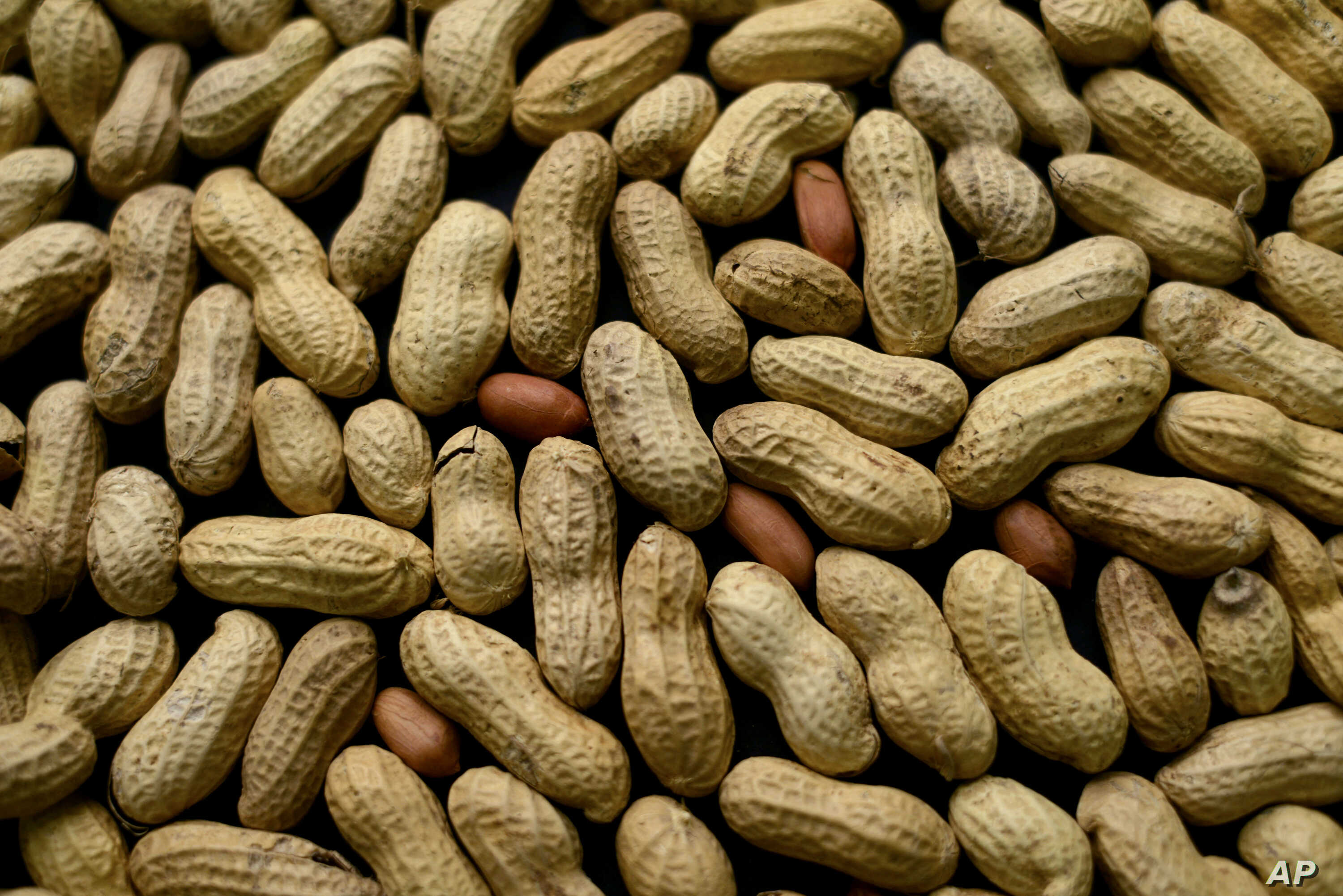FILE - Peanuts are on display in New York,