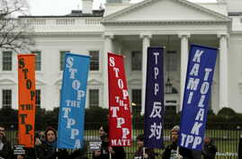 Opponents of the Trans Pacific Partnership (TPP) trade agreement protest outside the White House in Washington, Feb. 3, 2016.