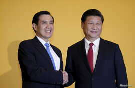 Chinese President Xi Jinping shakes hands with Taiwan's President Ma Ying-jeou during a summit in Singapore November 7, 2015.