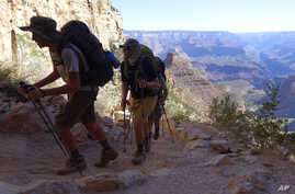 FILE - In this July 27, 2015, file photo, hikers head out of the Grand Canyon along the Bright Angel Trail at Grand Canyon National Park, Arizona.