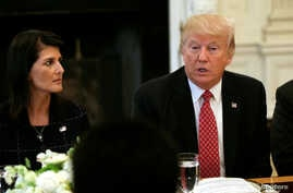 FILE - With U.S. Ambassador to the United Nations Nikki Haley at his side (L), U.S. President Donald Trump speaks during a working lunch with ambassadors of countries on the U.N. Security Council at the White House in Washington, April 24, 2017.