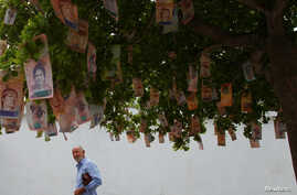 A man sees at Bolivar notes hanging in a tree at a street in Maracaibo, Venezuela, Nov. 11, 2017.