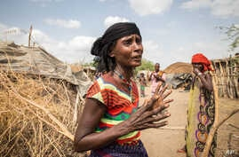 In this photo taken Jan. 26, 2016, Mayrem Humeyisu talks about food supply in her neighborhood in a rural village Dubti Woreda, Afar, Ethiopia.