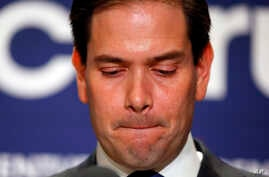 Republican presidential candidate Sen. Marco Rubio, R-Fla., speaks during a Republican primary night celebration rally at Florida International University in Miami, Florida, March 15, 2016. Rubio is ending his campaign for the Republican nomination f...