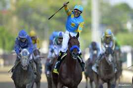 Victor Espinoza aboard American Pharoah celebrates winning the 141st Kentucky Derby at Churchill Downs, May 2, 2015. (Credit: Jamie Rhodes-USA TODAY Sports)