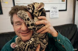 Joel Sartore and a clouded leopard cub cuddle after a photo shoot at the Columbus Zoo in Ohio. The leopards, which live in Asian tropical forests, are illegally hunted for their spotted pelts.(Photo by Grahm S. Jones/National Geographic Photo Ark)