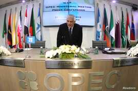 Secretary General Abdullah al-Badri arrives for news conference following meeting oil ministers at OPEC headquarters, Vienna, Dec. 4, 2013.