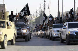 FILE - Islamic State fighters parade on military vehicles along the streets of Syria's northern Raqqa province.