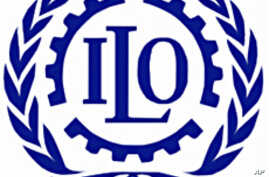 ILO Report Warns of Scarred Generation of Young Workers