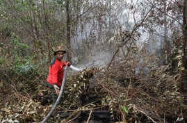 A fire fighter sprays water to extinguish a forest fire in Pekanbaru, Riau province, Indonesia, Feb. 21, 2018.
