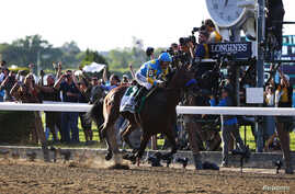 American Pharoah, with jockey Victor Espinoza aboard, wins the 2015 Belmont Stakes and the Triple Crown at Belmont Park in Elmont, N.Y., June 6, 2015. (Credit: Winslow Townson-USA TODAY Sports)