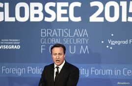 Britain's Prime Minister David Cameron delivers a speech during the Bratislava Global Security Forum Globsec in Bratislava, Slovakia, June 19, 2015