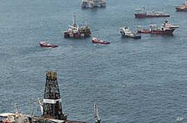 BP Well Capped, Gulf Oil Cleanup Continues