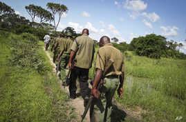 FILE - Armed members of the Kenyan security forces march through dense swamp and forest in the remote village of Kaisari, near Mpeketoni, on the coast of Kenya, June 17, 2014.