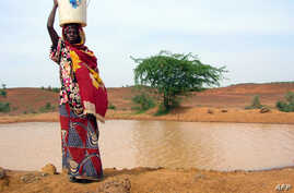 A woman continues to get water from a pool infected with cholera in Gounfara, Niger despite warnings from medical services, August 29, 2005.
