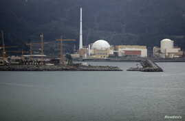FILE : A general view of Angra dos Reis nuclear complex, located 240 km (150 miles) from Rio de Janeiro, in this Aug. 31, 2011 file photo.
