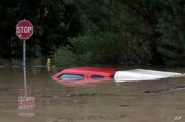The top of a pickup truck is seen in flood waters from the Russian River in Forestville, Calif., on Feb. 27, 2019.