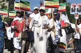 Ethiopian Diaspora, US Rights Groups Seek Democratic Progress in Ethiopia