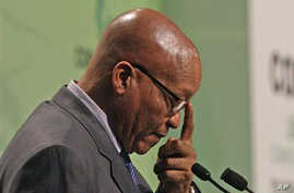 Zuma's Plan for South Africa Wins Support