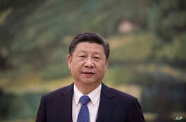 China's President Xi Jinping looks on before to meet with former US Secretary of State Henry Kissinger (not seen) at the Great Halll of the People in Beijing on December 2, 2016.