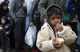 A child eats an apple waiting in line to cross the Serbian-Croatian border, at the village of Berkasovo, near Sid, Serbia, Oct.15, 2015.