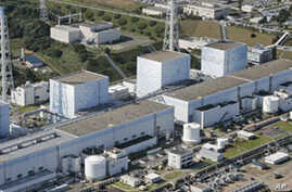 Analysts Debate the Safety of Nuclear Power Plants