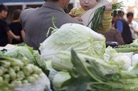 ADB: Rising Food Prices Could Increase Poverty in Asia