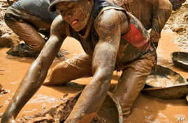 New Law Aims to Halt Sale of Conflict Minerals from Congo