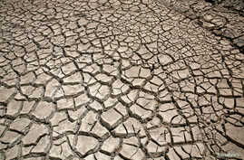 Cracked ground is pictured at the dried Ajuan Khota dam, a water reserve affected by drought near La Paz, Bolivia, Nov. 17, 2016.
