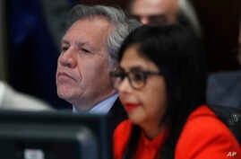 Secretary General of the Organization of American States Luis Almagro, left, listens to Venezuela's Foreign Minister Delcy Rodriguez as she speaks to the Permanent Council of the Organization of American States in Washington, March 27, 2017.