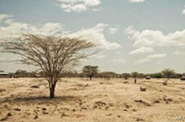 Helping Kenya's Turkana People Help Themselves