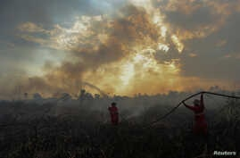 Firefighters try to extinguish a bush fire in Ogan Ilir regency, South Sumatra, Indonesia, Aug. 4, 2017 in this photo taken by Antara Foto.