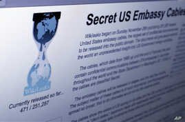 The Internet homepage of Wikileaks (file photo – 01 Dec 20