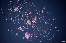 1200 pink balloons flying in the sky of Sofia, Bulgaria, as part of a campaign to raise awareness and promote prevention and treatment of breast cancer, Oct. 29, 2013.