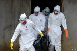 Medical workers of the Liberian Red Cross, wearing a protective suit, carry the body of a victim of the Ebola virus in a bag on Sept. 4, 2014 in the small city of Banjol, 30 kilometers from Monrovia.