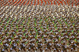 Members of the Iran's Revolutionary Guard march during an annual military parade marking the 34th anniversary of outset of the 1980-88 Iran-Iraq war, in front of the mausoleum of the late revolutionary founder Ayatollah Khomeini just outside Tehran, ...