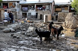 In this Sunday, Aug. 4, 2013 photo, Afghans stand near destroyed homes due to a flood that hit the Surobi district of Kabul, Afghanistan.
