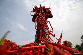 FILE - A man spreads red chilli peppers for drying at a farm in India, Feb. 5, 2018. Over the last five years, more than 100 farmers in the region of Kajiado County in Kenya have begun growing chili.