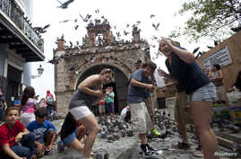 FILE - Tourists react to a flock of pigeons as they visit Parque de las Palomas in San Juan, Puerto Rico, July 18, 2015.