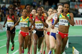 Genzebe Dibaba of Ethiopia runs on her way to winning the women's 3000 meters final during the IAAF World Indoor Athletics Championships in Portland, Oregon, March 20, 2016.
