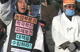 South Korean farmers demand resumption of North Korea food aid to ease rice glut in South