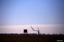 FILE - A dead tree stands near a water tank in a drought-stricken paddock located on the outskirts of the southwestern Queensland town of Cunnamulla in outback Australia, Aug. 10, 2017.