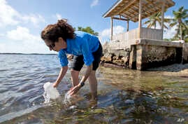 FILE - Sarah Egner, director of curriculum development at Marinelab in Key Largo, Florida, takes a water sample to check for the presence of microscopic plastics in the water, Feb. 7, 2017.