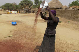 FILE - A photo taken on Feb. 23, 2017 shows a woman spreading grain in front of her house in Koza, in the extreme north of Cameroon.