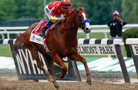 Justify (1), with jockey Mike Smith up, crosses the finish line to win the Belmont Stakes horse race and the Triple Crown, June 9, 2018, in Elmont, N.Y.