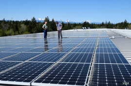 The new 75 kW community solar array on the roof of a Mason County Public Utility District No. 3 building in Shelton, Washington. (T. Banse/VOA)