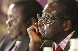ICG: Mugabe Party Blocking Reforms
